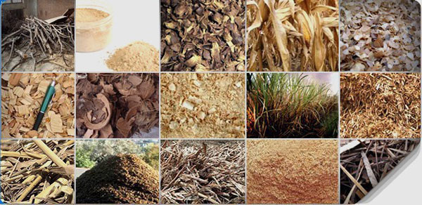 biomass wastes for making wood pellets