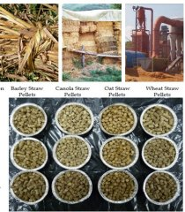 How to Make Crop Stalks into Fuel Pellets