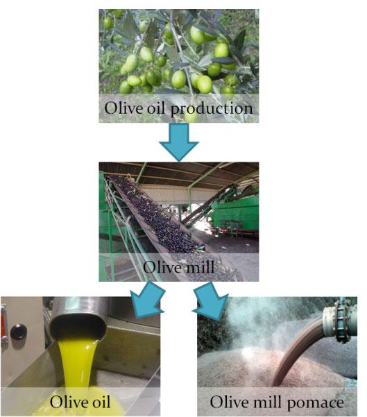 olive_pomace_from_the_mill