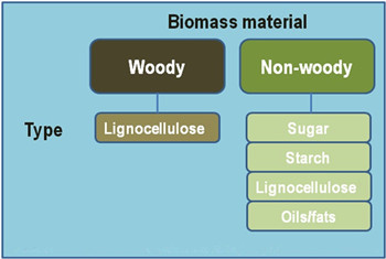 biomass_sources_for_wood_pellet_equipment