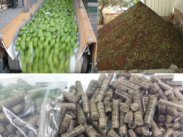 Making Olive Pomace into Fuel Pellets