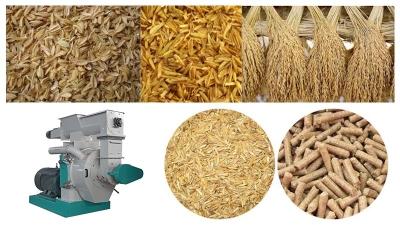 Rice Husk Pellet Mill