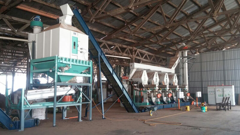 Ring Die Wood Pellet Mill to Vietnam