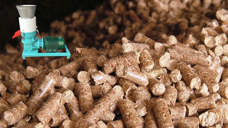 solution for beech pellet making beech pellet mill. Black Bedroom Furniture Sets. Home Design Ideas