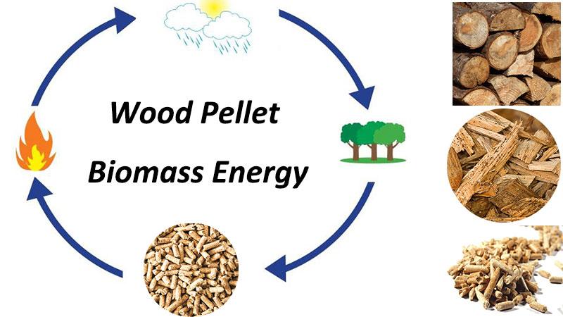 biomass energy wood pellet