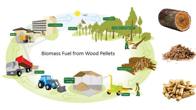 biomass waste fuel