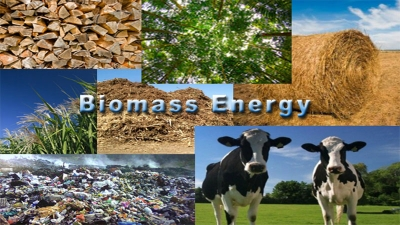 biomass waste to fuel