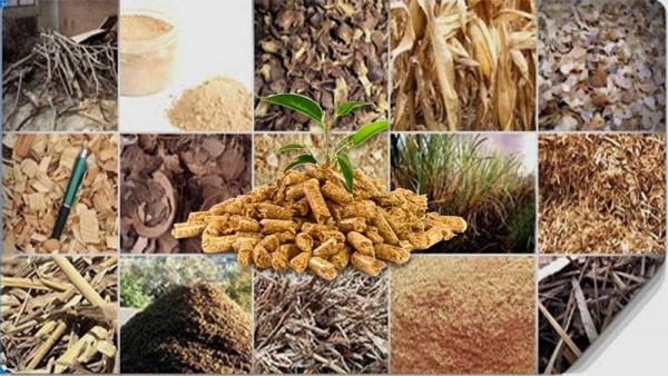 biomass wastes