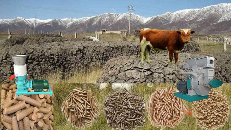 cow dung pellet