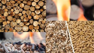 firewood vs wood pellet