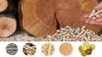 russia wood pellet market
